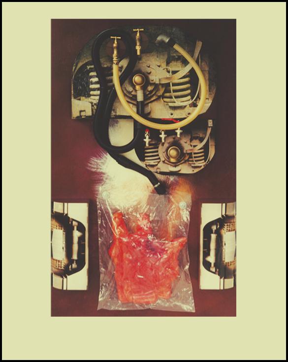 Sans titre - 97 x 162 - Collage et tuyaux sur toile
